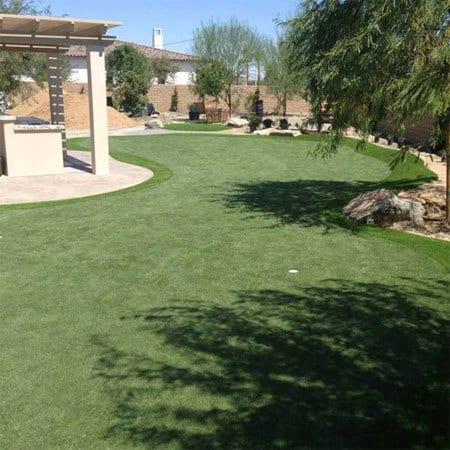 Arizona backyard artificial golf green